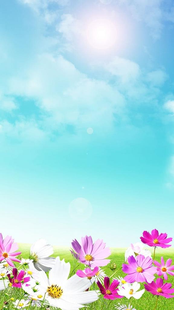 Lente achtergrond met bloemen voor iPhone 6