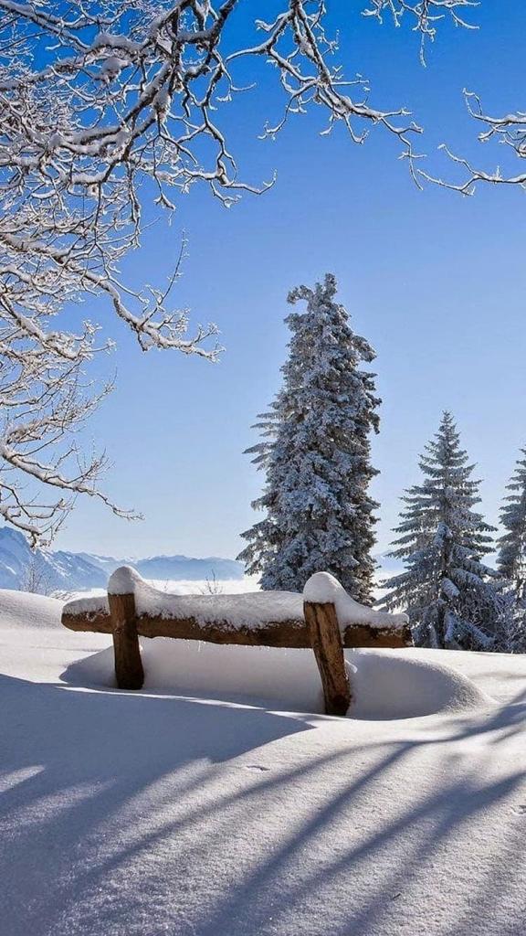 Winter wallpaper met sneeuw en bomen voor iPhone 6